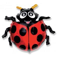 Божья коровка / Lady Bug