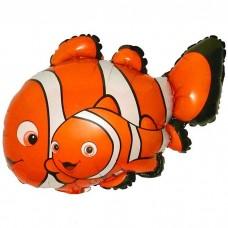 Рыбка-Клоун 2 / Cloun-fish 2 Series