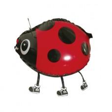 Божья Коровка / Walking Ladybug