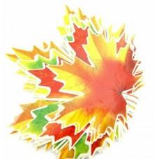 """Комплект """"Кленовые листья"""" 5 видов / Maple Leaves Set 5 kinds"""