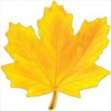 Кленовый Лист (Желтый) /  Maple Leaf (Yellow)