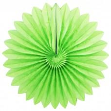 Бумажный диск Зеленый Series